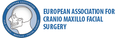 EACMFS Logo Mitgliedschaft Dr. Dr. Nico Laube DGBT Logo Mitgliedschaft Dr. Dr. Laube | groisman & laube