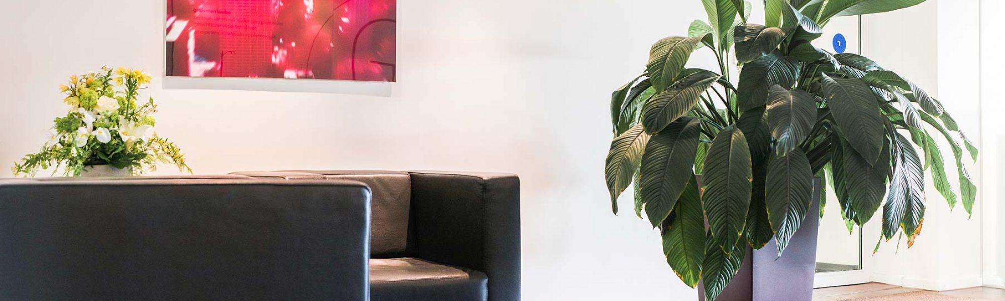 Bild des Wartezimmers der Gemeinschaftspraxis von Groisman & Laube in Frankfurt